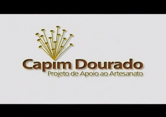 Projeto de Apoio ao Artesanato em Capim Dourado